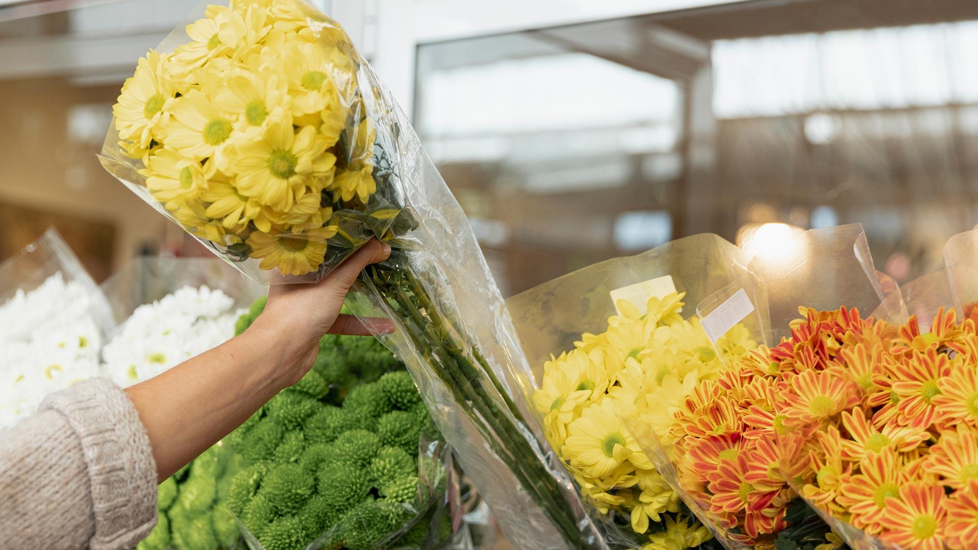 Видеоурок «Ассортимент цветочных баз»